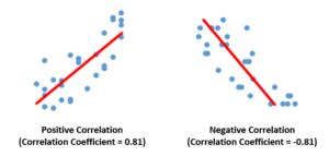 Positive & Negative Correlations
