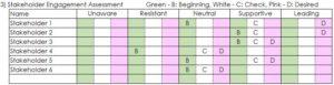 Stakeholder Engagement Assessment
