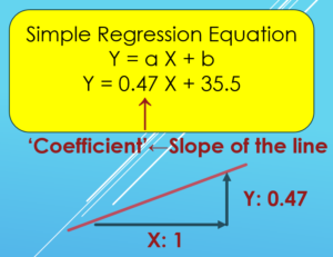 Explanation of Coefficient