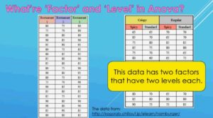 What are differences between Factor and Level in Anova 2