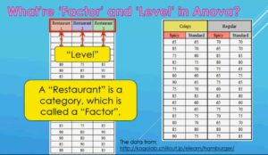 118 What are differences between Factor and Level in Anova